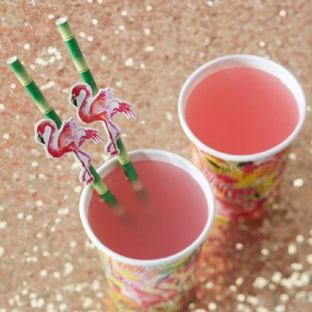 Pink Flamingo Fun Bamboo Straws - pack 20